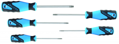 Set surubelnite 3C, 5 piese, TORX T10-T30, nr.art. 2163 TX-05